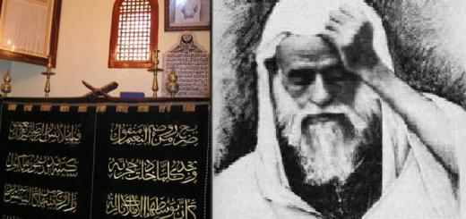 cheikh-al-alawi
